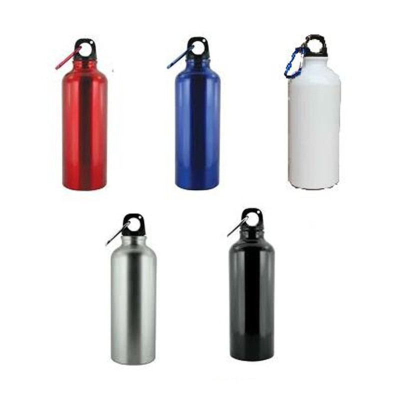 750Ml Metallic Bottle