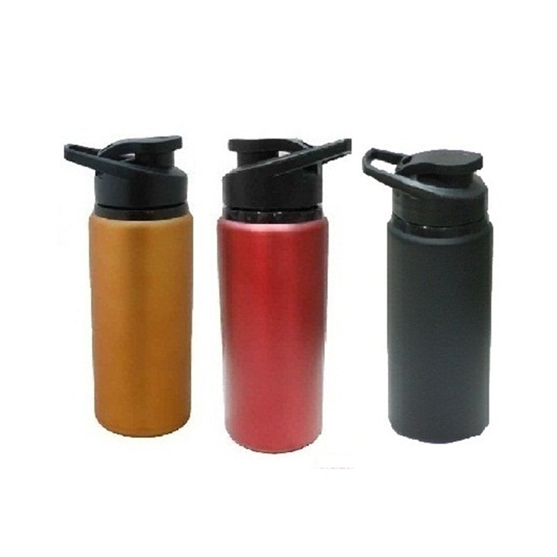 700Ml Ss Metalic Bottle