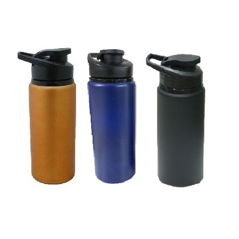 600Ml-Ss Metallic Bottle
